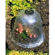 Glasglocken Für Pflanzen