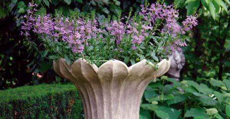 Pflanzgefäße Amphoren Steinobjekte Blickpunkt Garten